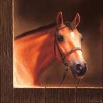 Dmitry Grigorovich : HorseHead