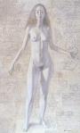 Alexander Dudin : Woman'sAnatomy